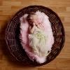 Фотосессия малышки Лизы. 10 дней